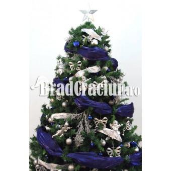 """Brad de Craciun 210 cm -""""gheata albastra"""""""