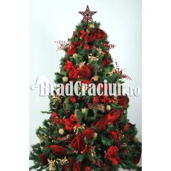 """Brad de Craciun 210 cm -""""spuma grena"""""""