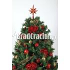 """Brad de Craciun 210 cm """"mere rosii"""""""