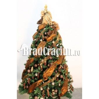 "Brad de Craciun 210 cm -""condurii de ciocolata"""