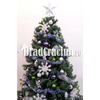 """Brad de Craciun 210 cm cu beteala """"panselute de iarna"""""""