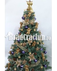 "Brad de Craciun 210 cm promoroaca ""golden blue"""