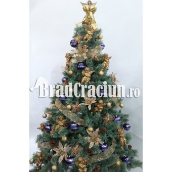 "Brad de Craciun 195 cm promoroaca ""golden blue"""