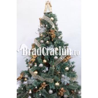 """Brad de Craciun 195 cm promoroaca """"pepite de aur"""""""