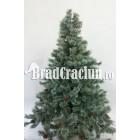 """Brad de Craciun 195 cm promoroaca """"renul Rudolf"""""""