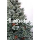 "Brad de Craciun 195 cm promoroaca ""golden pink"""