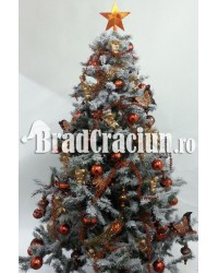 """Brad de Craciun 195 cm cu zapada """"ciocolata cu alune"""""""