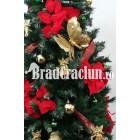"""Serie 9 buc. Brad de Craciun ingust 225 cm  """"Steaua Craciunului"""""""