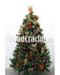 """Brad de Craciun 240 cm """"ambra violet"""""""