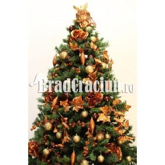 """Brad de Craciun 240 cm """"coniac fin"""""""