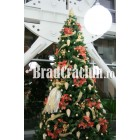 "Brad de Craciun 360 cm  ""zane si flori"""