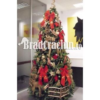 "Brad de Craciun 340 cm ""casuta renilor"""