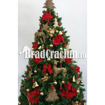 """Brad de Craciun 340 cm """"renii veseli"""""""