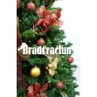 """Brad de Craciun 270 cm """"zana florilor"""""""