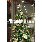 "Brad de Craciun 300 cm ""pastel auriu"""