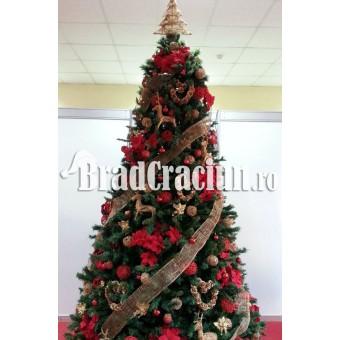 """Brad de Craciun 270 cm """"renii lui Mos Craciun 2"""""""