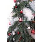 "Brad de Craciun _270 cm pe brad special ""vis de iarna"""