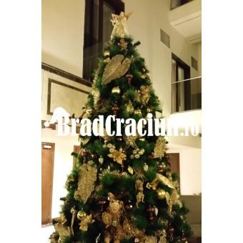 "Brad de Craciun 300 cm ""alegorie de ciocolata"""