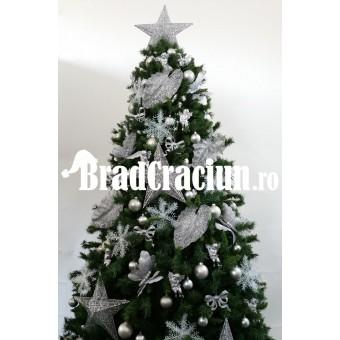"""Brad de Craciun 300 cm """"natura de gheata"""""""