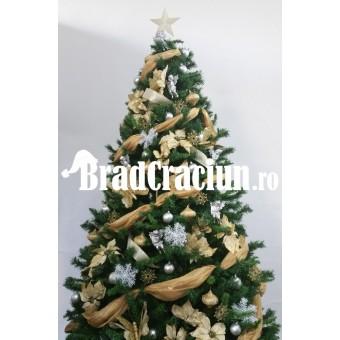 "Brad de Craciun 300 cm - ""Firenze"""