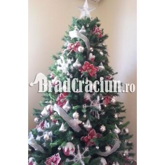 """Brad de Craciun 270 cm """"ninge pe brad"""""""