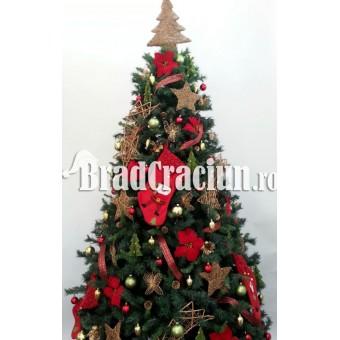"""Brad de Craciun 270 cm """"rustic"""""""