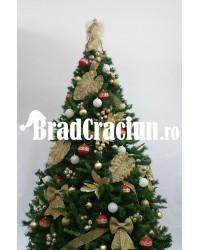 """Brad de Craciun 270 cm """"Napoli"""""""
