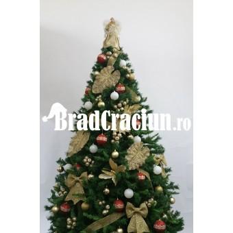 """Brad de Craciun 300 cm """"Napoli"""""""