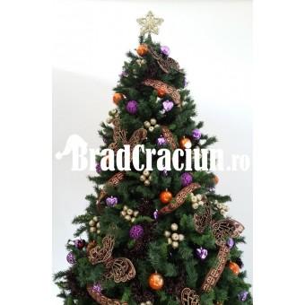"Brad de Craciun 300 cm ""aroma de portocale"""