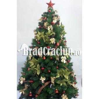 """Serie 9 buc. Brad de Craciun cu pin 240 cm  """"flori de steaua craciunului TGM"""""""