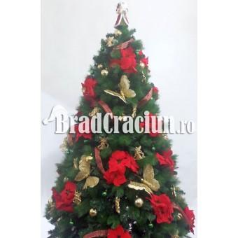 """Serie 16 buc. Brad de Craciun cu pin 240 cm  """"Steaua Craciunului"""""""